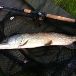 Gary Westwood 10lb Leacroft Pike July 2013