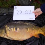 Calfheath 22lb 2oz Nov 15 (3)
