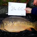 Calfheath 24lb Nov 15 (4)