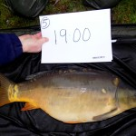 Kingswood 19lb Nov 15 (3)