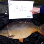 Kingswood 19lb Nov 15 (4)